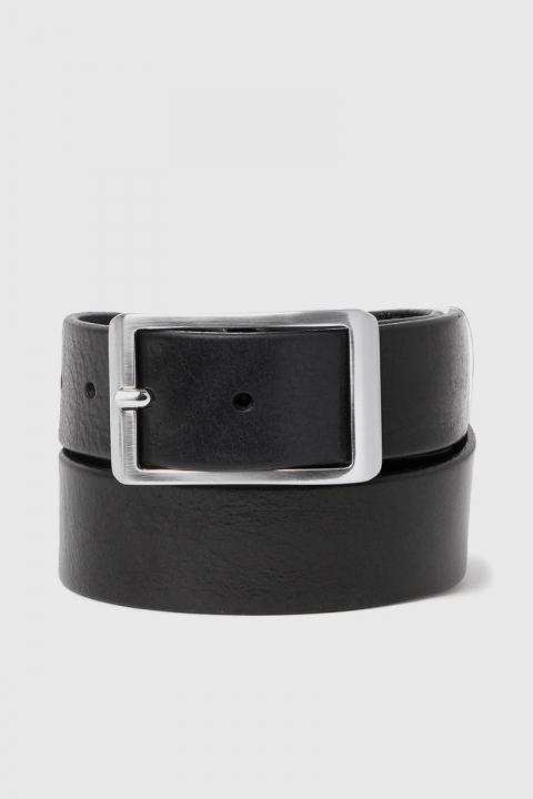 Saddler 78608 Black Riem