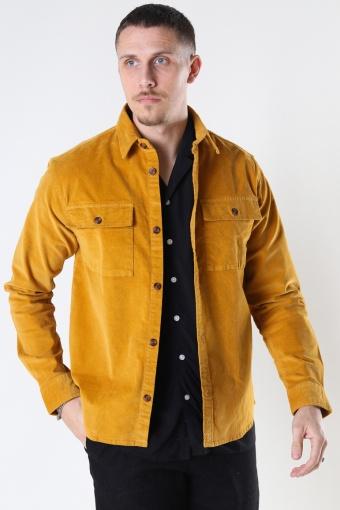 Haza 430 Yellow